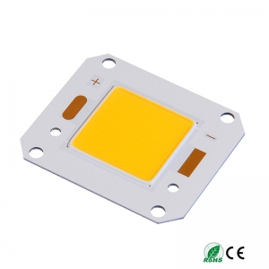 30w-80w COB LED Chip 40X46...