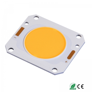 20w-80w COB LED Chip 40X46...